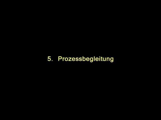 Vidoe: 5. Prozessbegleitung